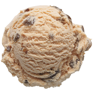 Rum_Raisin-Scoop